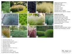 Prijedlog biljnog materijala